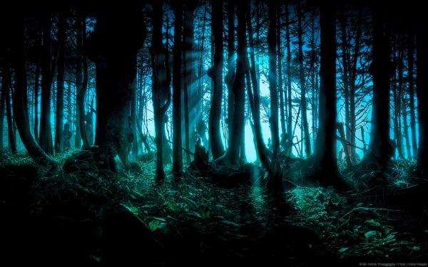 Dark Folk y música Neoclásica